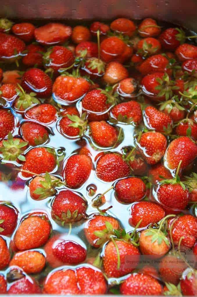 washing fresh strawberries in water