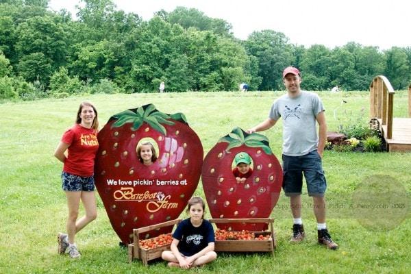 Strawberry Jam 3 Ways