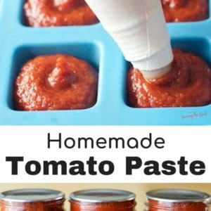 homemade tomato paste collage