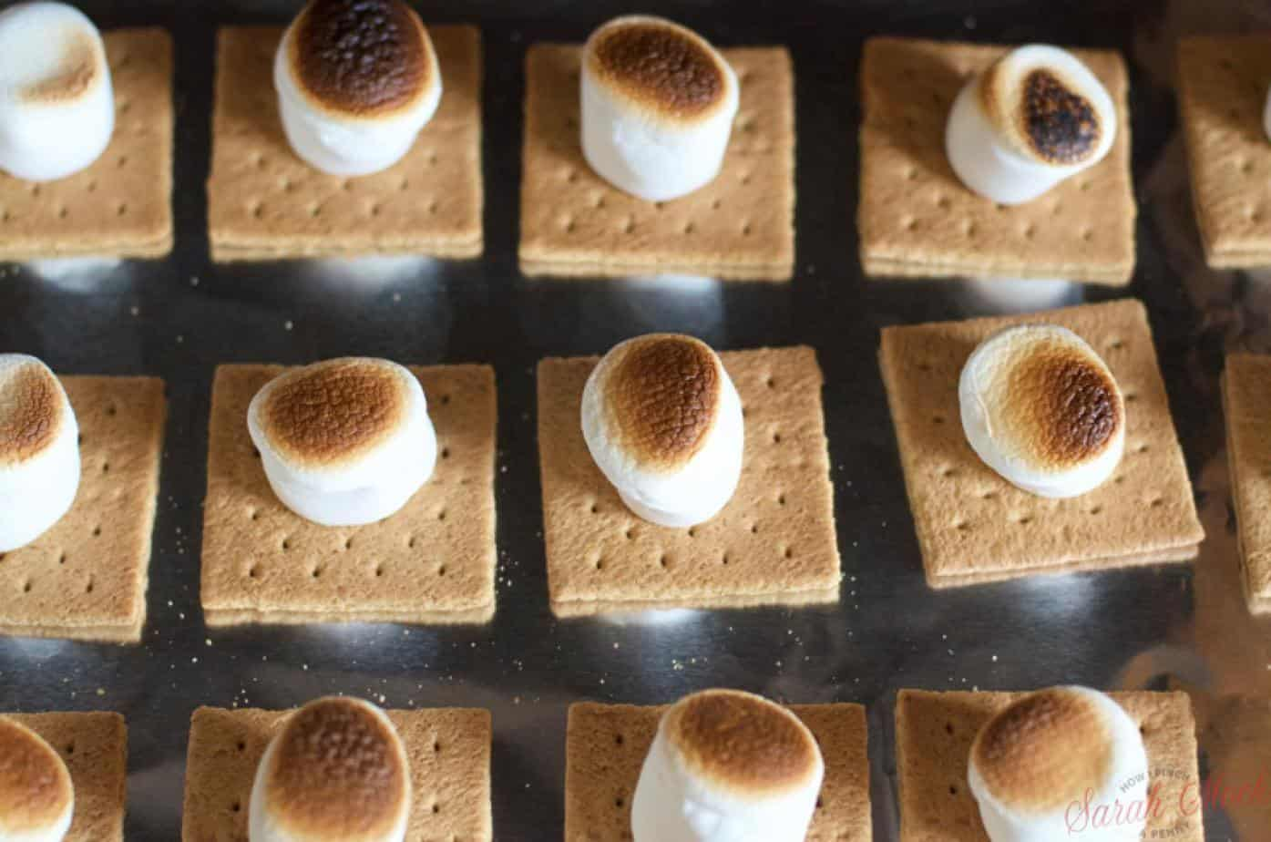 broiled marshmallows on graham cracker squares