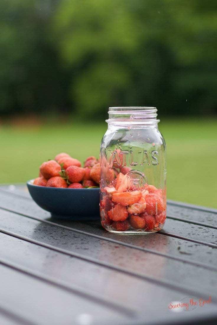 Strawberry Vodka. DIY Recipe. Simple Instructions