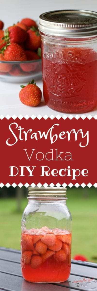 Strawberry Vodka. DIY Recipe. Simple Instructions.