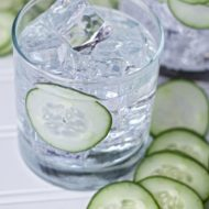 Sous Vide Cucumber Infused Gin Recipe