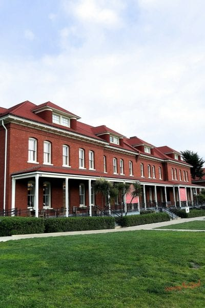 What is there to do at the Walt Disney Family Museum?
