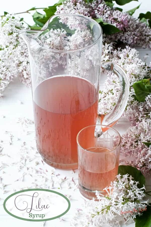 lilac syrup in a glass pitcher
