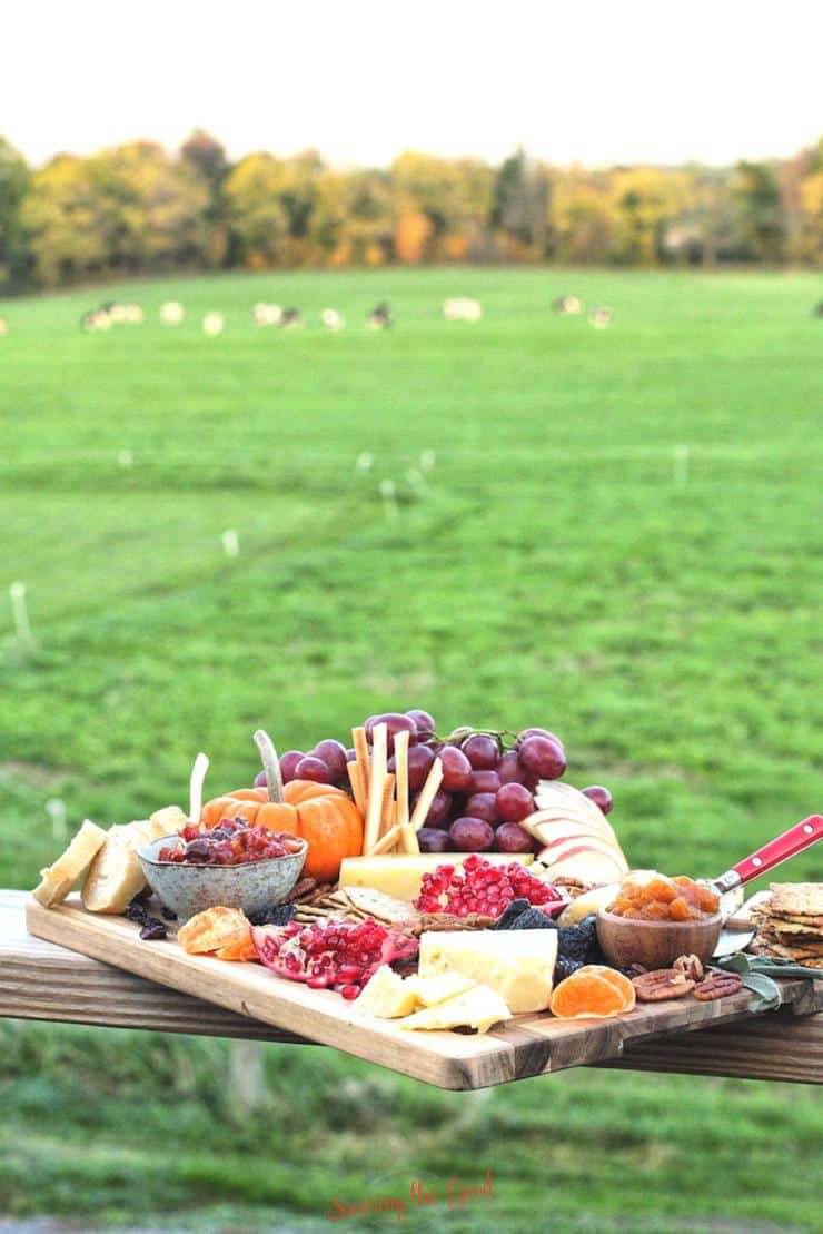 cheese board on a railing overlooking a dairy farm