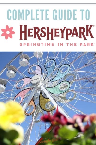 floral Springtime In The Park graphic