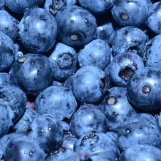 fresh blueberries square image
