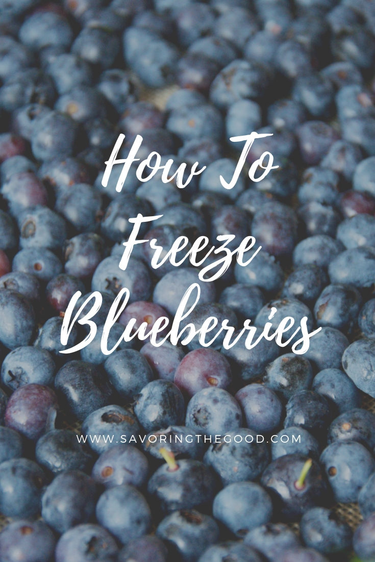 I love blueberries but the fresh blueberry season is short. While the blueberries are plentiful, take time to freeze blueberries with these simple steps. Learn how to freeze blueberries so you can enjoy these anti oxidant rich fruits all year long. #pyo #pyofarm #blueberries #pyoblueberries #frozenblueberries #freshblueberries