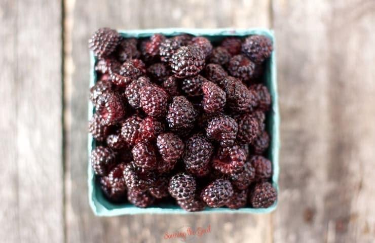 pint of fresh black raspberries over head shot