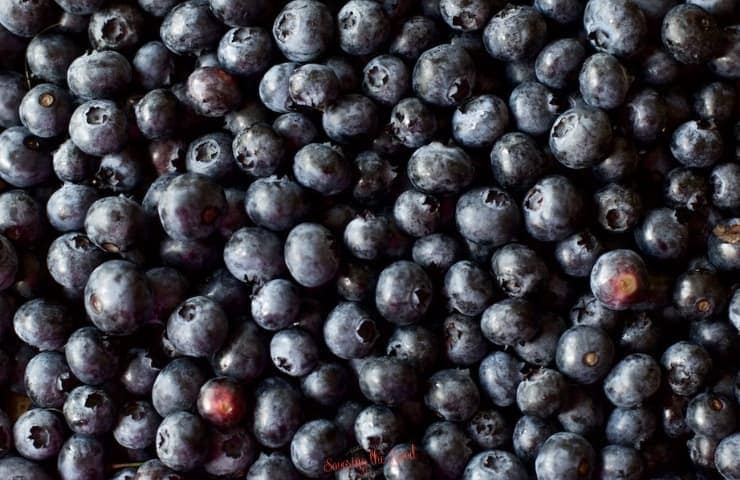 horizontal image of fresh blueberries