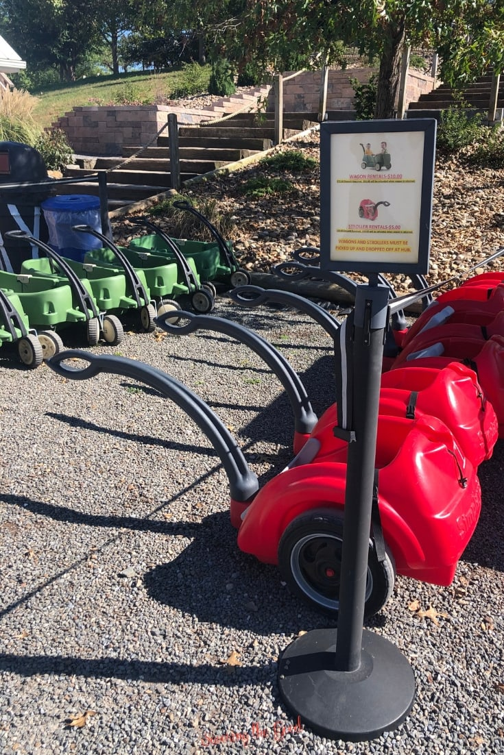 strollers and wagons for rent at Lake Tobias Wildlife Park