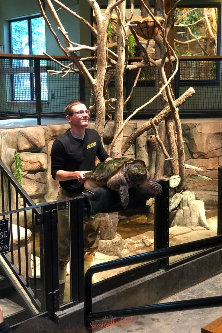 reptile show at Lake Tobias Wildlife Park