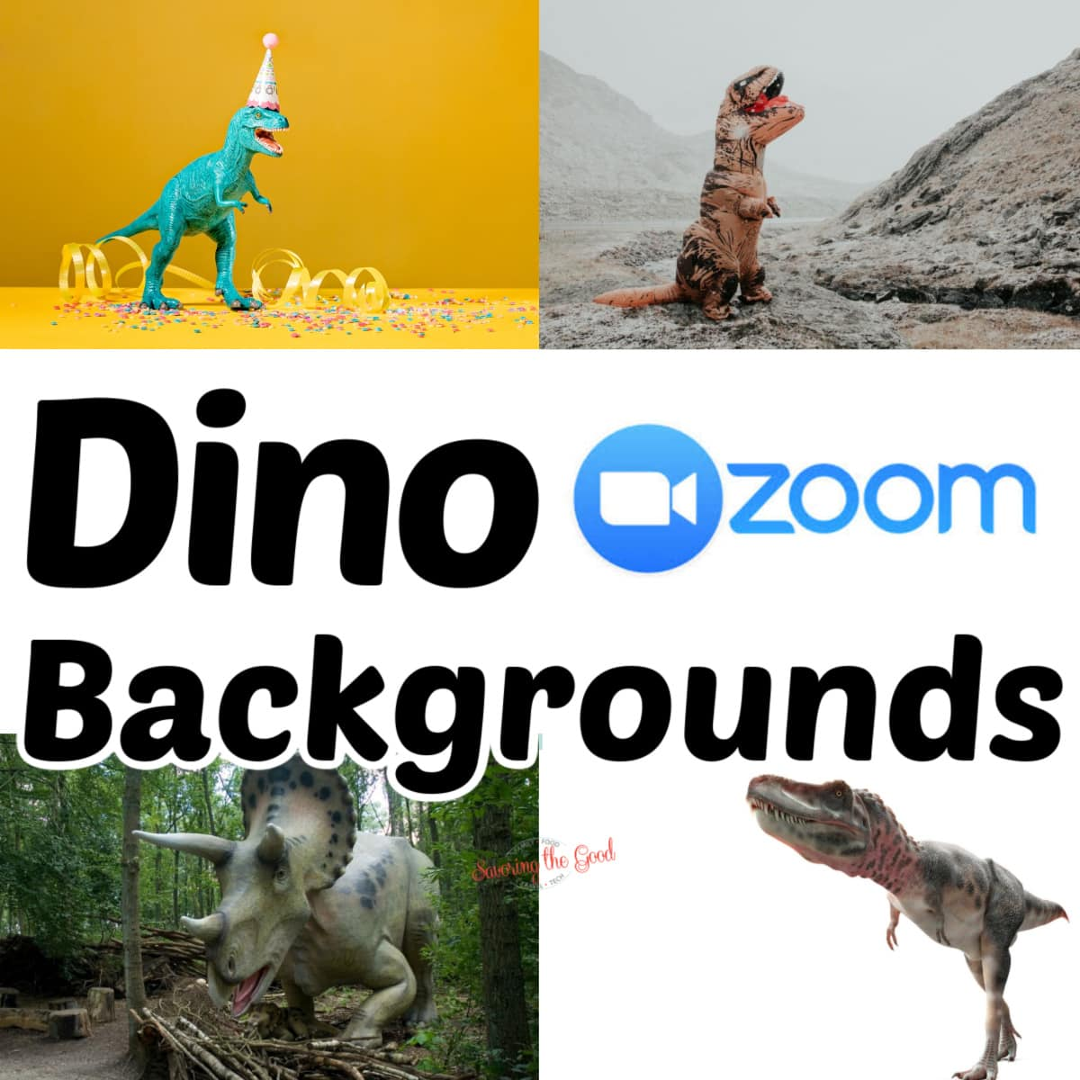Dinosaur Themed Zoom Backgrounds