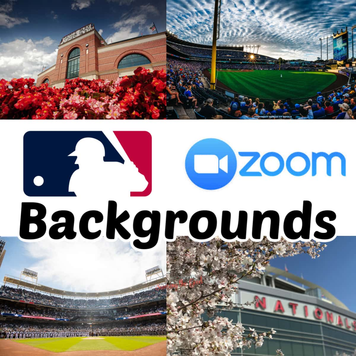 Major League Baseball Backgrounds for zoom