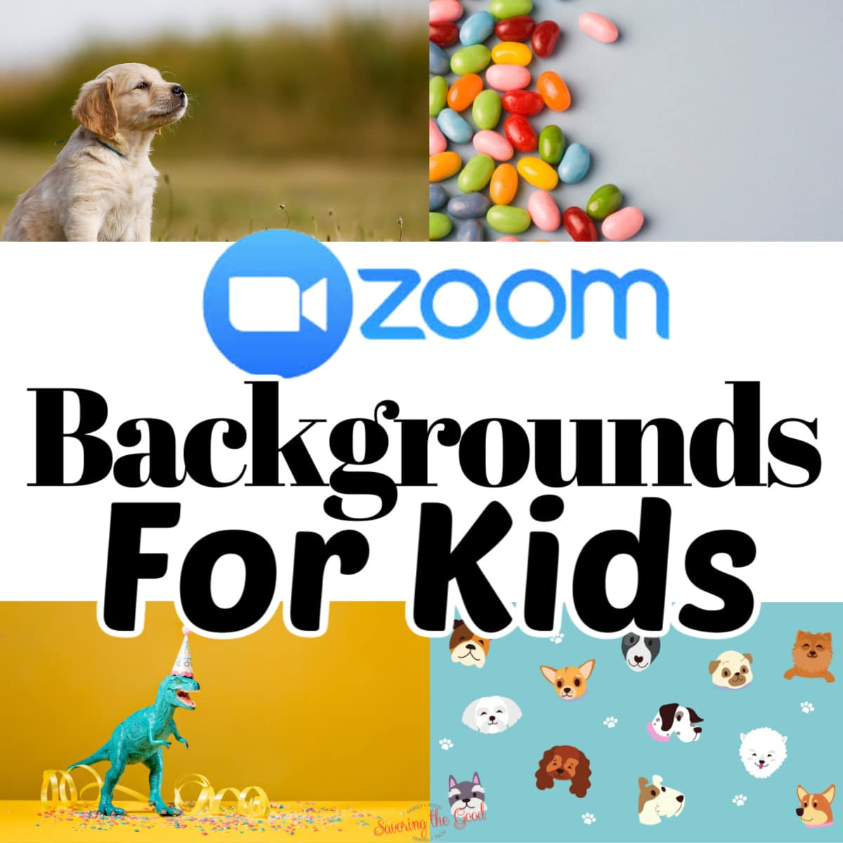 Huge List Of Zoom Backgrounds For Kids | Savoring The Good