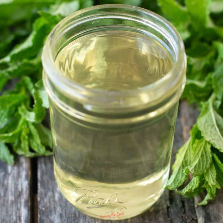 mint simple syrup in a glass mason jar, fresh mint leaves in the background, square image