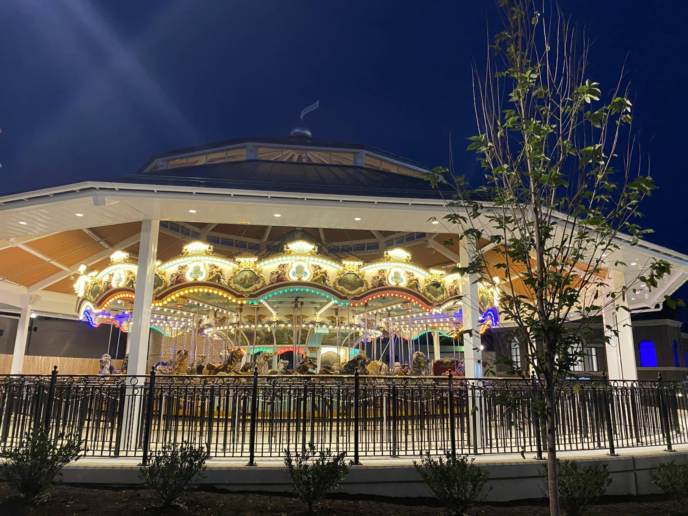 Carrousel at Night