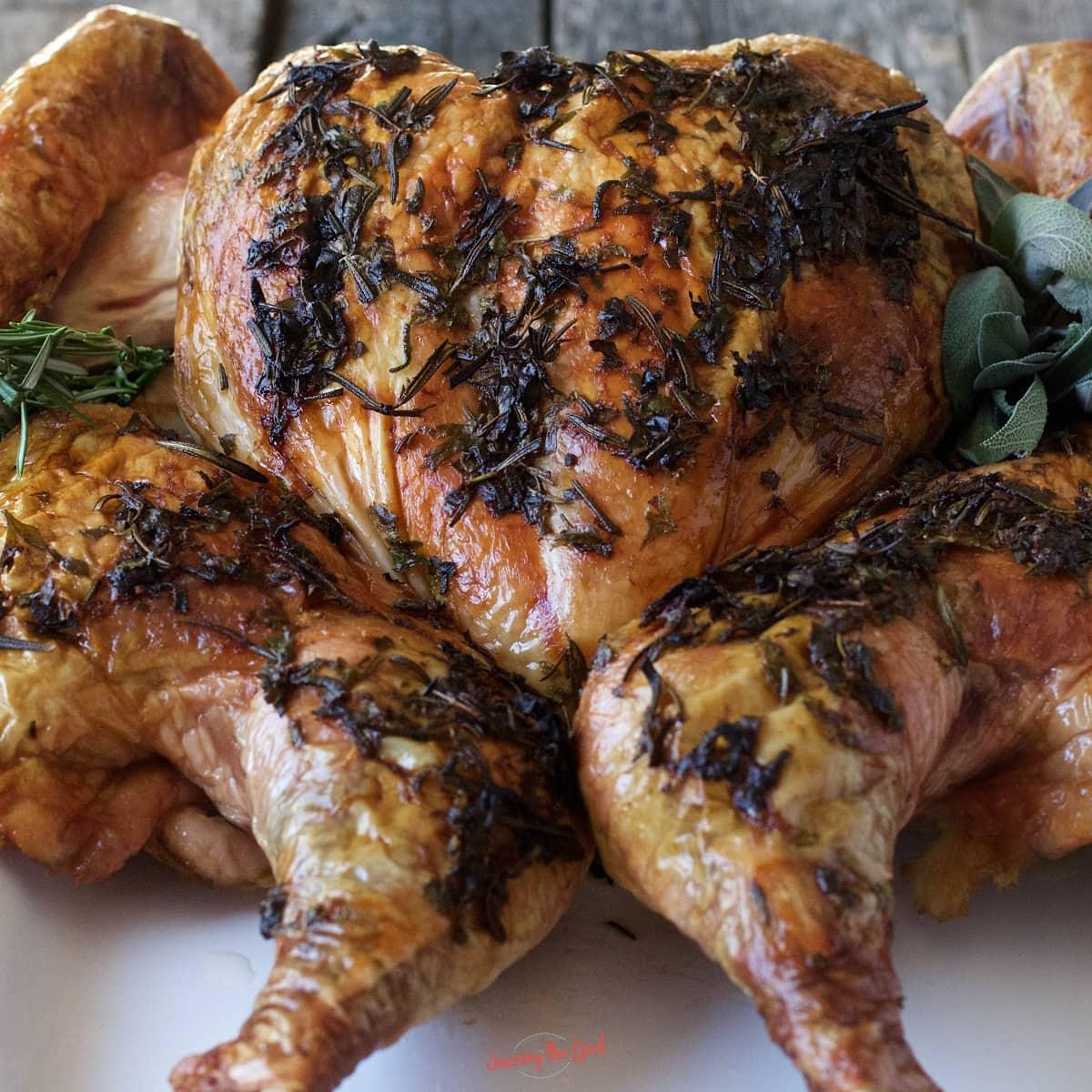 spatchcock turkey roasted golden brown, pressed flat on a serving platter, square image