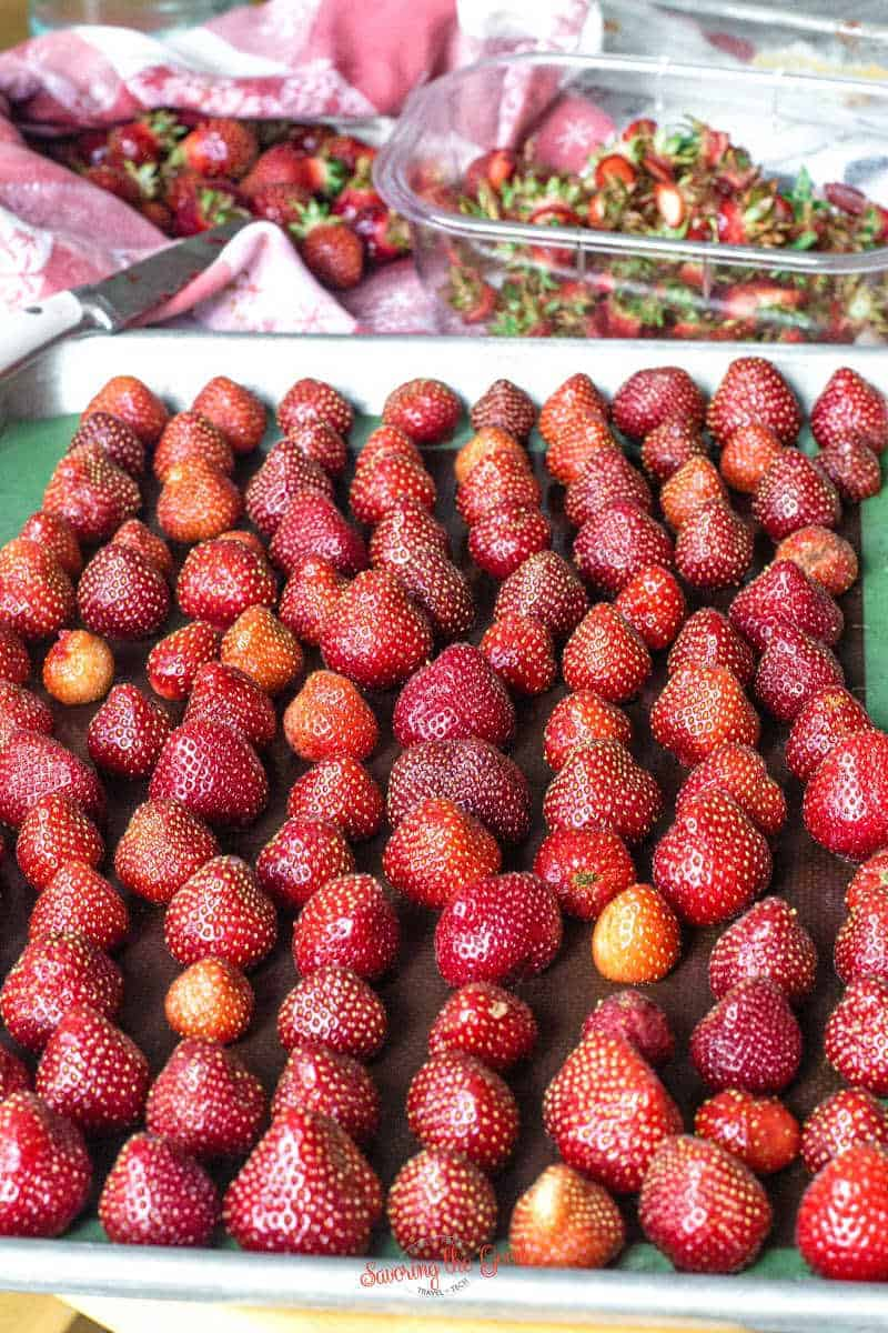 fresh strawberries, stems cut off on a sheet tray to be frozen