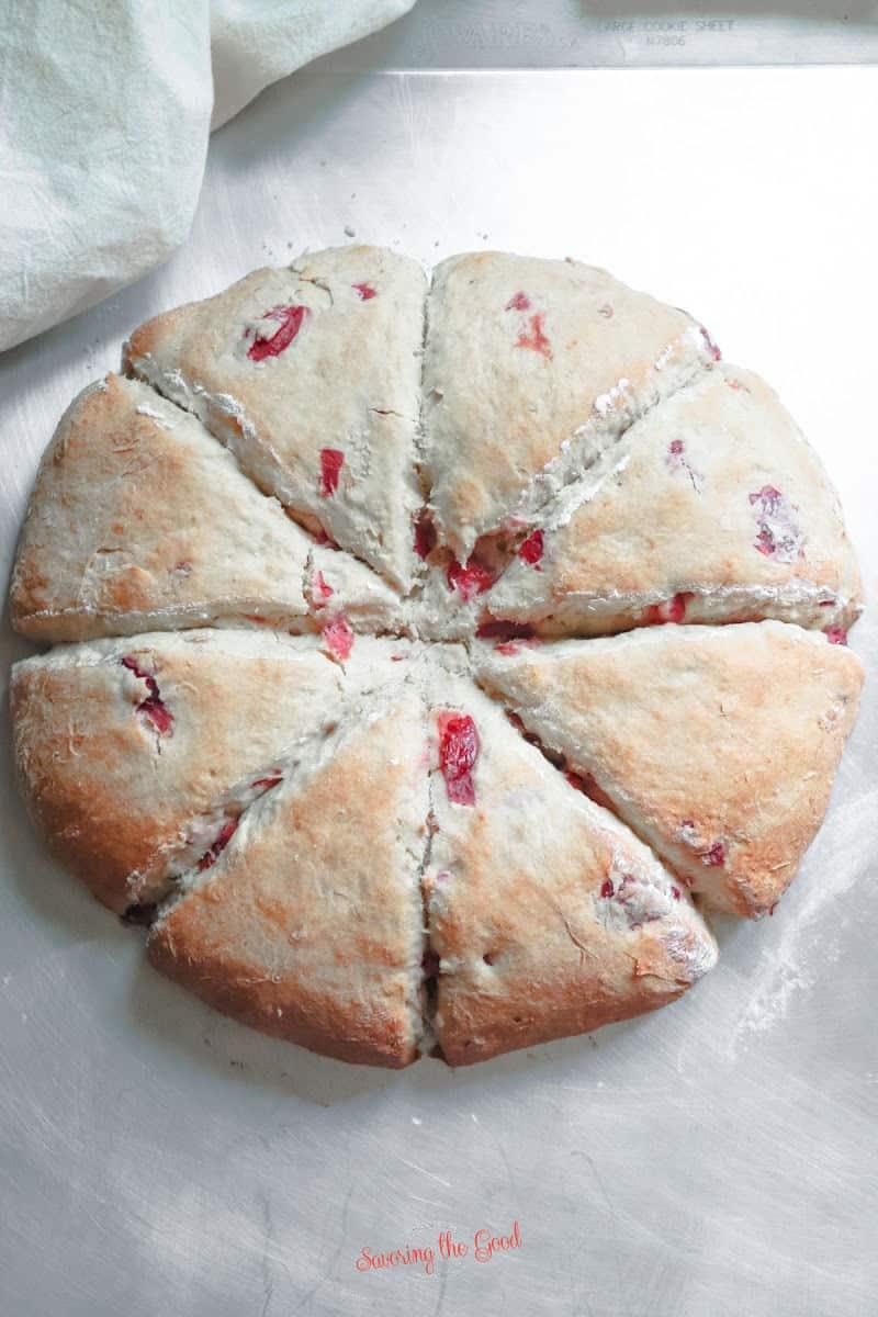 freshly baked cherry scones in a disk