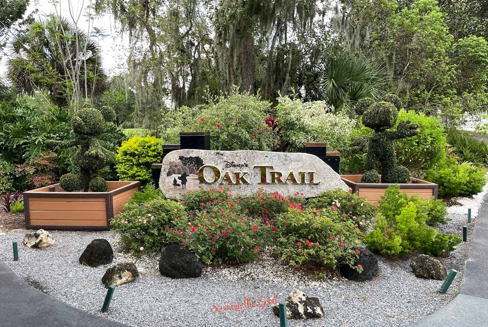 Disney's Oak Trail entrance with mickey and minnie topiaries