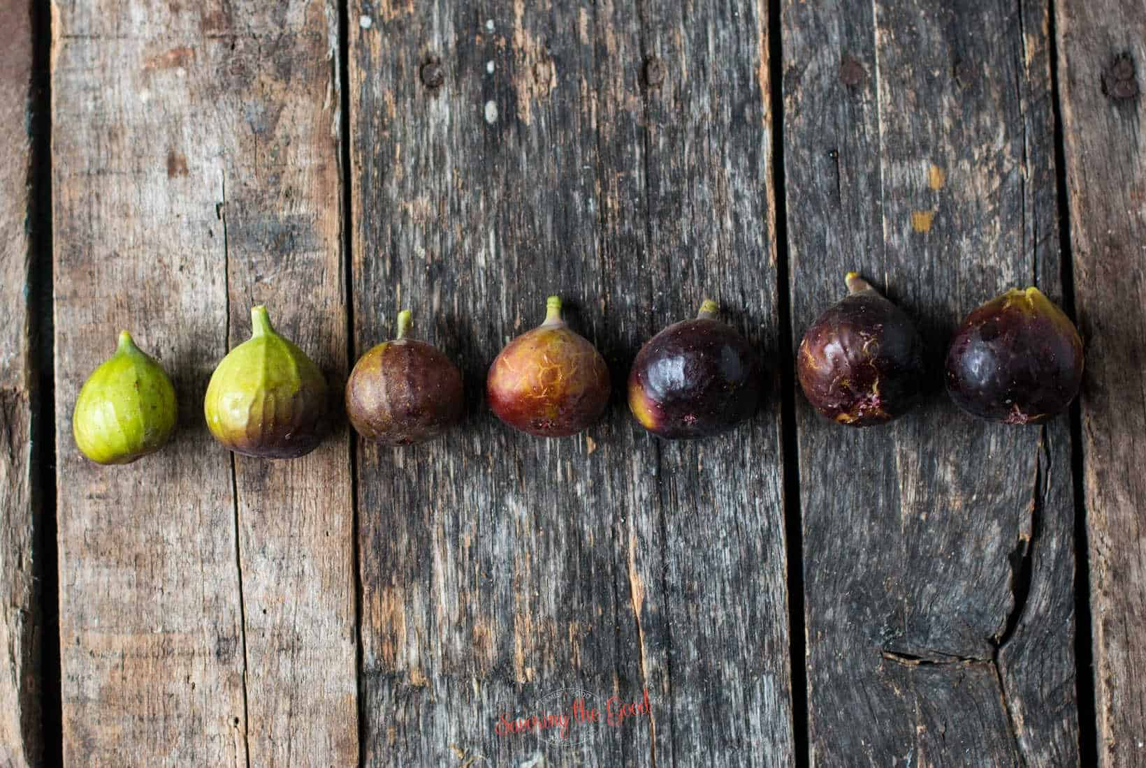 7 figs in a row showing progression of ripeness